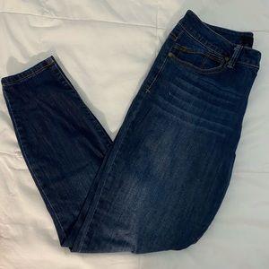 Ankle Skinny Jeans in Winter Raquel